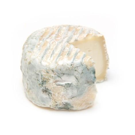 Chavignol bleuté